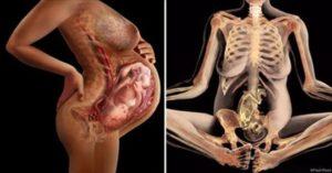 30 Недель беременности лобковая кость