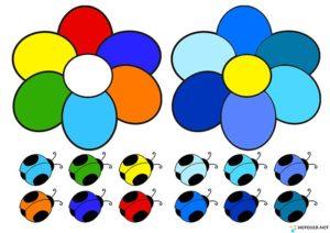 Как научит ребенка цветам?
