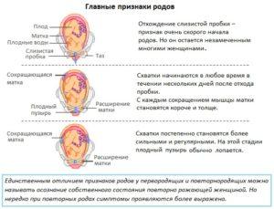 Признаки родов второй беременности 38 недель
