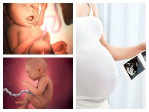 Головокружение тошнота 33 неделе беременности