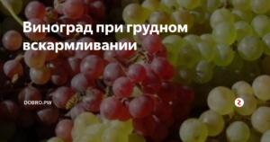 Можно ли виноград при кормлении грудью?