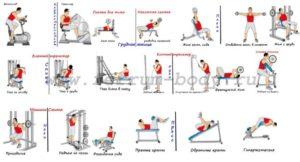 Система занятий в тренажерном зале для похудения