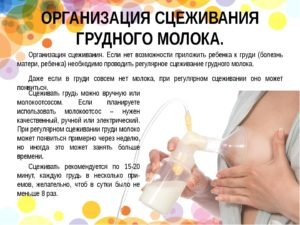 Что делать нет грудного молока?