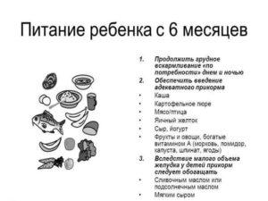 Питание и режим ребенка в 7 месяцев