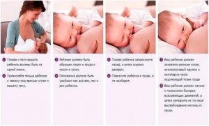 Правила кормления новорожденного грудным молоком