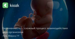 Беременность 14 недель низкая плацентация