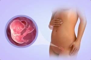 Насморк на 8 неделе беременности