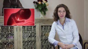 Беременность 38 недель видеогид по беременности