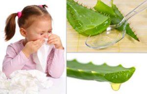 Лечение насморка алоэ у детей до года