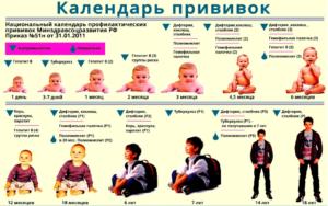 Прививки ребенку от года