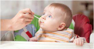 Ребенок не хочет есть прикорм 6 месяцев