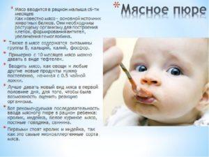Как вводить мясо в прикорм малышу?