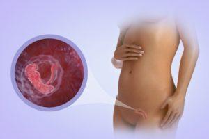 1 неделя беременности ощущения в животе