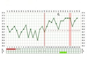 12 Недель беременности температура 37 1