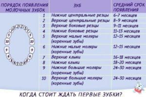 Во сколько месяцев вылезают зубы у детей