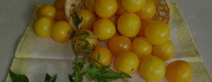 Можно ли кормящим желтые помидоры?