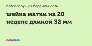 Длина шейки матки на 20 неделе