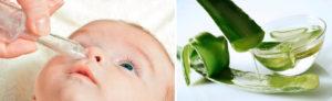 Лечение насморка у детей до года алоэ