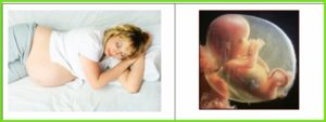 30 Недель беременности хочется спать
