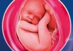 Маловодие при беременности 39 40 недель