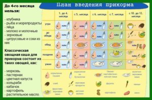 С какого возраста ребенку давать прикорм