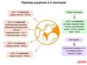 Как кормить ребенка в 6 мес?