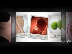 Болит поясница на 10 неделе беременности