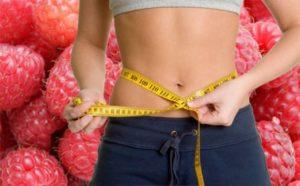 Малина помогает похудеть