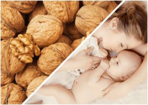 Можно ли есть кормящим мамам грецкие орехи?