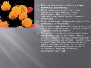 20 Неделя беременности лейкоциты 60 65