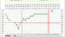 Температура тела на 10 неделе беременности
