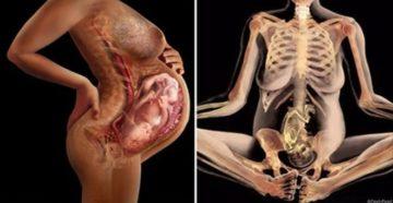 Болят тазовые кости при беременности 25 недель
