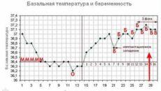 Температура при беременности 23 недели