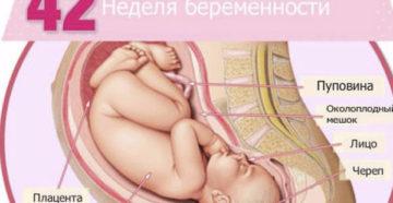 42 Неделя беременности никаких признаков