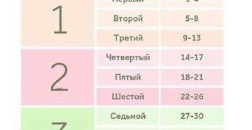 32 33 Недели беременности сколько это месяцев